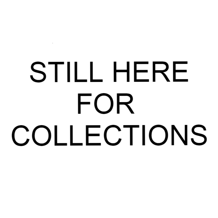 Division 24 Skate Store - Still Here For Collections