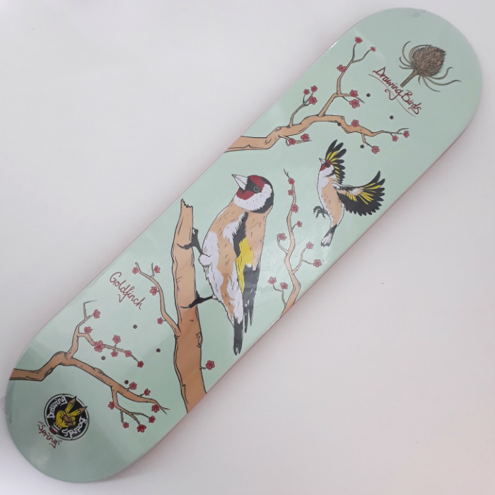 Drawing Boards - Goldfinch - Skateboard Deck 8.00